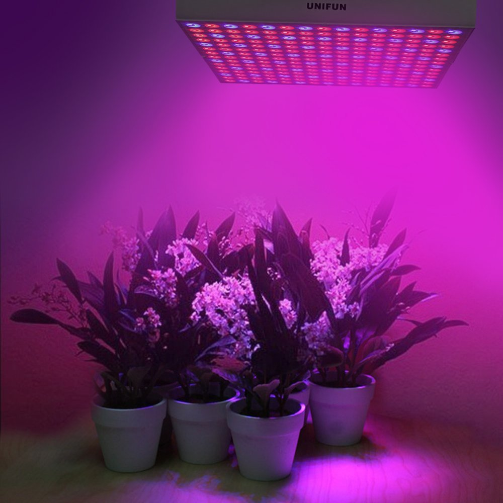 45w Led Grow Light Review