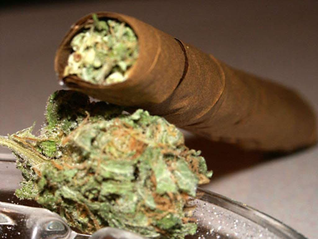 health marijuana blunts